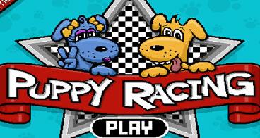 Puppy Racers - Kart dos animais